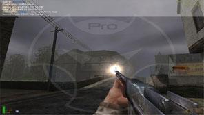 DMW Pro - Screenshot InGame